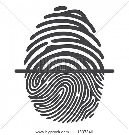 Black fingerprint isolated on white background. Elements of identification systems, security conception, apps icons. Vector illustration.