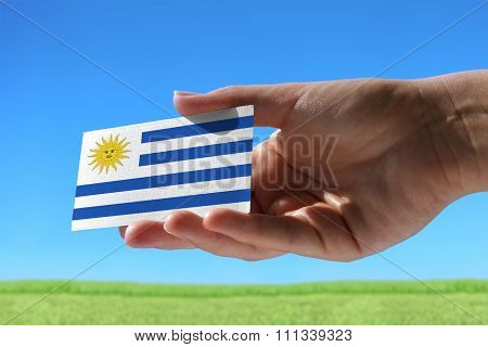 Small Flag Of Uruguay