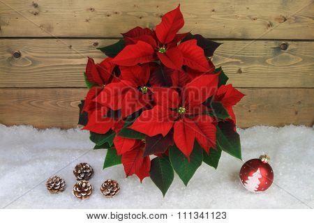 Typical Christmas And Holidays Symbols