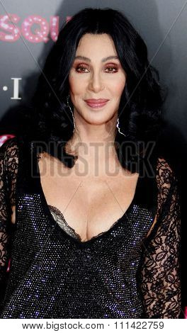 LOS ANGELES, USA - NOVEMBER 15: Cher at the Los Angeles Premiere of