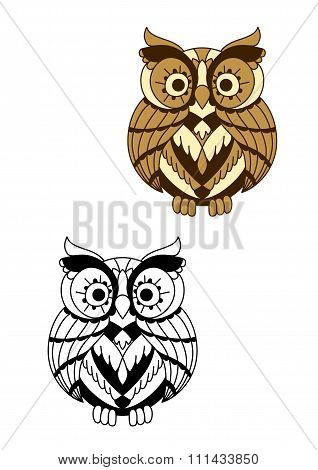 Rounded owl bird with brown plumage
