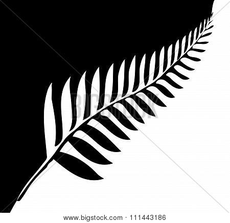 Silver Fern Of New Zealand