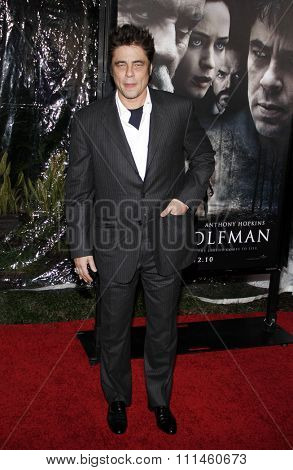 February 9, 2010. Benicio Del Toro at the Los Angeles premiere of
