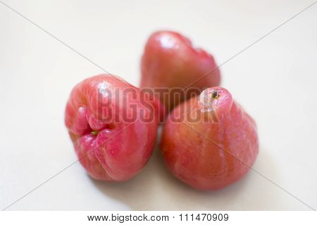 Syzygium Jambos Fruits