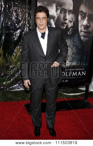 Benicio Del Toro at the Los Angeles premiere of 'The Wolfman' held at the ArcLight Cinemas in Hollywood on February 28, 2010.