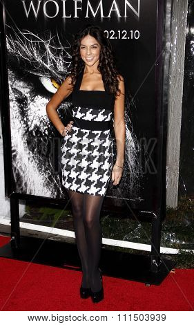Terri Seymour at the Los Angeles premiere of 'The Wolfman' held at the ArcLight Cinemas in Hollywood on February 28, 2010.