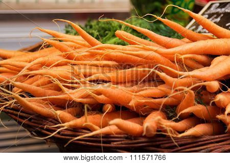 Colorful Carrots In A Basket