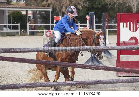 Horse Baulking To Jump Just Before The Obstacle