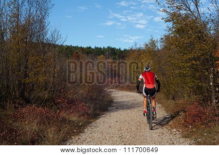 Mountain Bike Cyclist