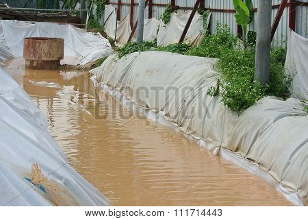 Sediment pond at the construction site.