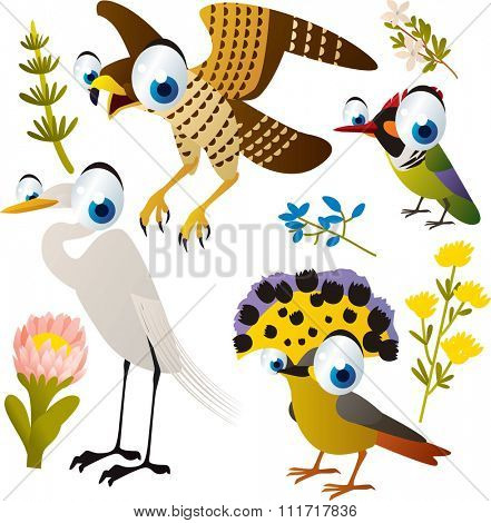vector cute cartoon set of comic animals: falcon, flycatcher, egret, hummingbird. useful for kids mobile apps, flash card games, invitations, wall decor and other