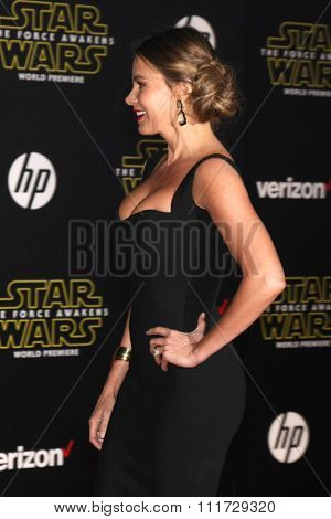 LOS ANGELES - DEC 14:  Sofia Vergara at the Star Wars: The Force Awakens World Premiere at the Hollywood & Highland on December 14, 2015 in Los Angeles, CA