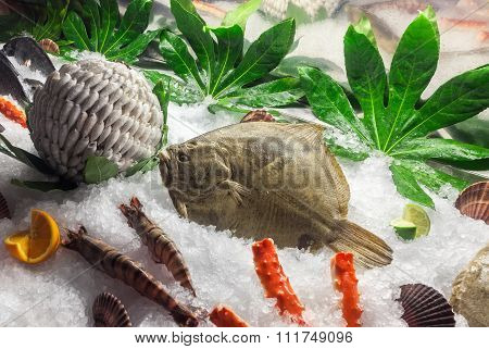 Fresh Flounder On Ice, Surrounded By Fish, Shrimp, Greens And Fruits. Focus On The Flounder