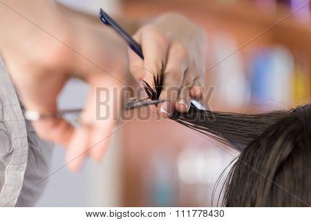 Haircutting.