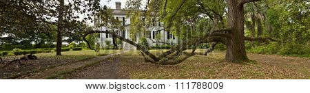 BEAUFORT, SOUTH CAROLINA-APRIL 25, 2013: Panoramic shot of historic house and live oak tree in the oldest section of Beaufort, South Carolina