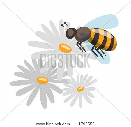 Bee cartoon style vector illustrations. Apiary vector symbols. Bee, honey, bee flowers icons. Honey natural healthy food production. Bee, flowers, beehive and wax. Honey bee vector icon. Bee vector
