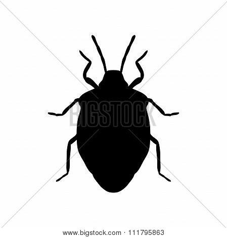 shield bug. Palomena prasina. Sketch of shield bug.  shield bug isolated on white background.