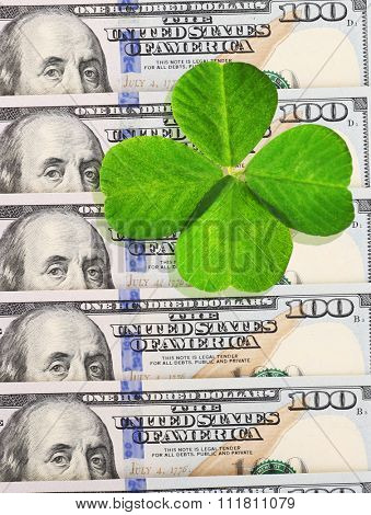 Clover leaf and dollars, close-up