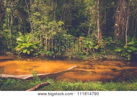 Thousand lingas river. Angkor. Siem Reap. Cambodia