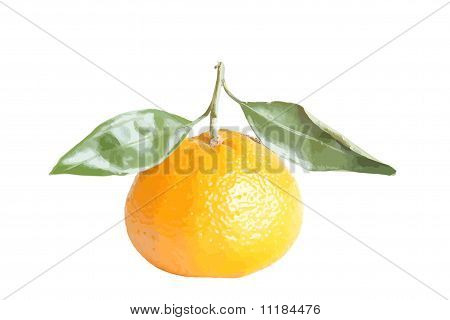 clementine with leaves vector illustration