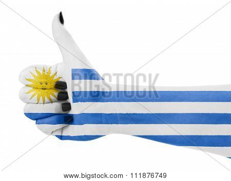 Flag Of Uruguay On Hand