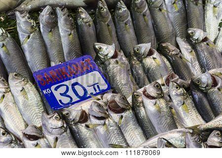Fish Market, Galata Waterfront, Istanbul
