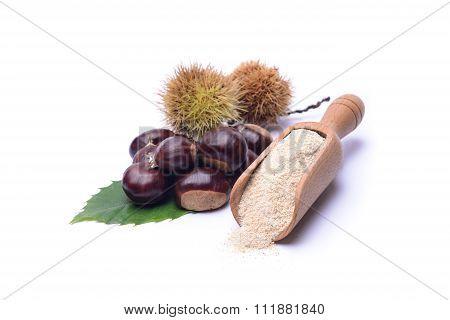 Chestnut's Flour