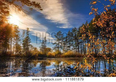 Autumn sunset on the river