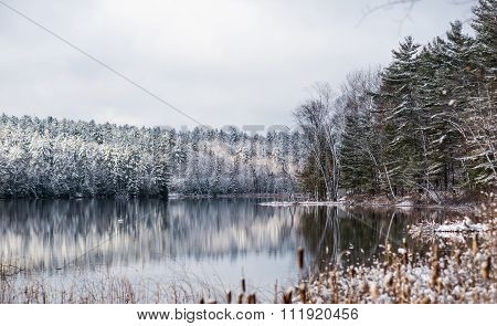Winter forest reflections.  Mirage on a yet unfrozen lake.