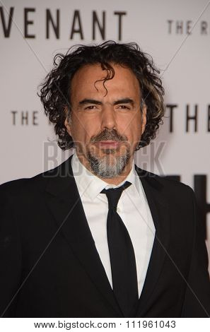LOS ANGELES - DEC 16:  Alejandro Gonzalez Inarritu at the The Revenant Los Angeles Premiere at the TCL Chinese Theater on December 16, 2015 in Los Angeles, CA