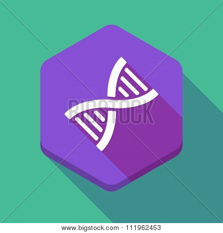 Long Shadow Hexagon Icon With A Dna Sign