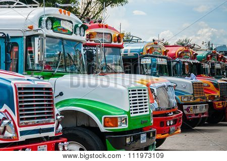 Very Colorful Jeepneys bus trucks in an array