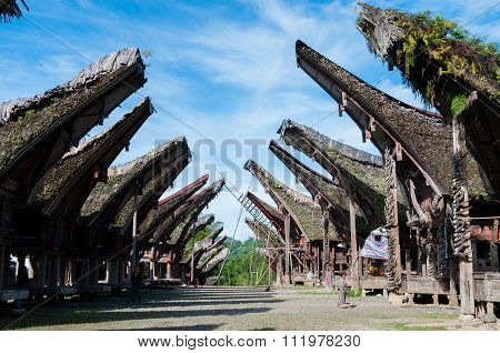 Village with Native and Traditional Houses of Tana Toraja in Sulawesi