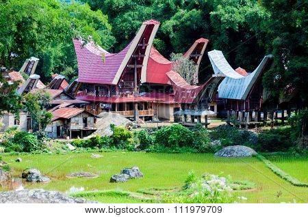 The Village with traditional and colorful houses of Tana Toraja