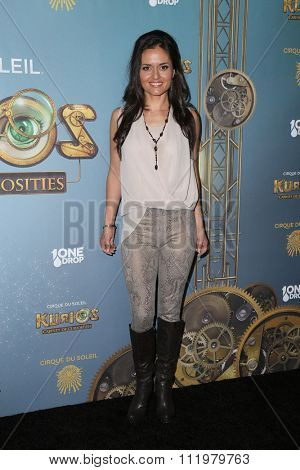 LOS ANGELES - DEC 09:  Danica McKellar at the Cirque Du Soleil's