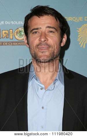 LOS ANGELES - DEC 09:  Goran Visnjic at the Cirque Du Soleil's