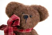 close up of the face and head of a brown stuffed toy bear poster