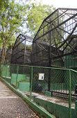 anitquated old fashion inhumane zoo cages Emperor Valley Zoo Port of Spain Trinidad & Tobago poster