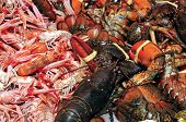 different kinds of shellfish in a fish and seafood market poster