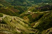 A steep set of flooded rice terraces stand next to a traditional village on an overcast day in Titian Longji the Dragon's Backbone in Guanxi China poster