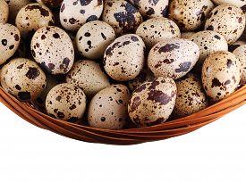 Basket with quail eggs
