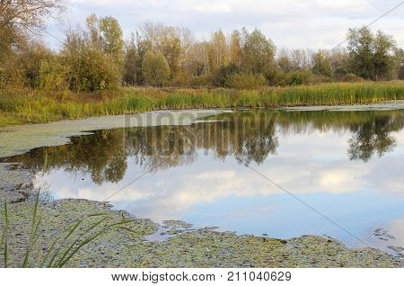 Autumn landscape with a lake in central Russia