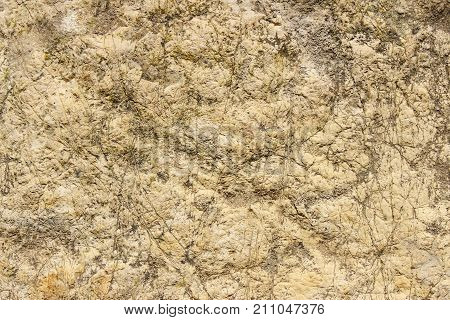 The texture of a flat stone limestone rocks as background