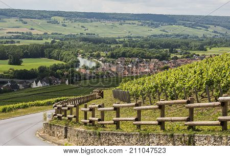 Cumieres France - June 9 2017: Vineyards of Moet Chandon near Hautvillers and Epernay in the Champagne district in France.