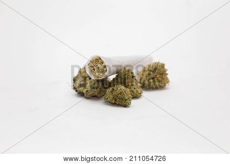 Joint Stacked On Buds