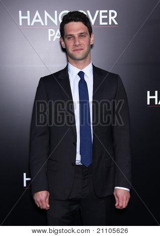 LOS ANGELES - JUN 19:  Justin Bartha arrives to the