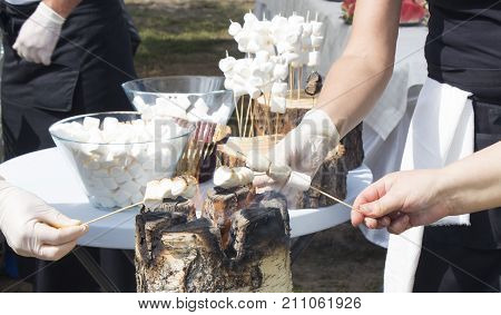 marshmallow, grill, barbecue, campfire, funny. Sweet and hot marshmallows on stick over the bonfire poster