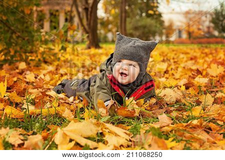 Autumn Baby Lying on Fall Maple Leaves Outdoors. Happy Little Child in Autumn Park (6 months old)