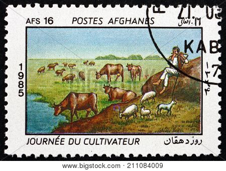 AFGHANISTAN - CIRCA 1985: a stamp printed in Afghanistan shows herd of cattle, farmers day, circa 1985