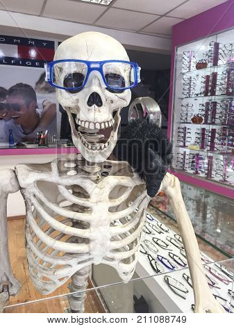 XALAPA, VERACRUZ, MEXICO- NOVEMBER 26, 2017: Skeleton wearing glasses and with a rat on his shoulder as decoration for Day of the Dead at an optical store in Xalapa, Veracruz, Mexico